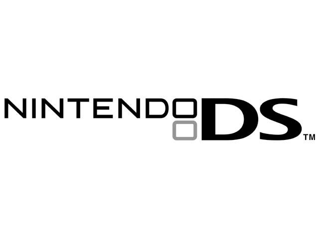 DS spil