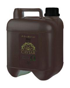 iv san bernard ring line caviar shampoo 5L